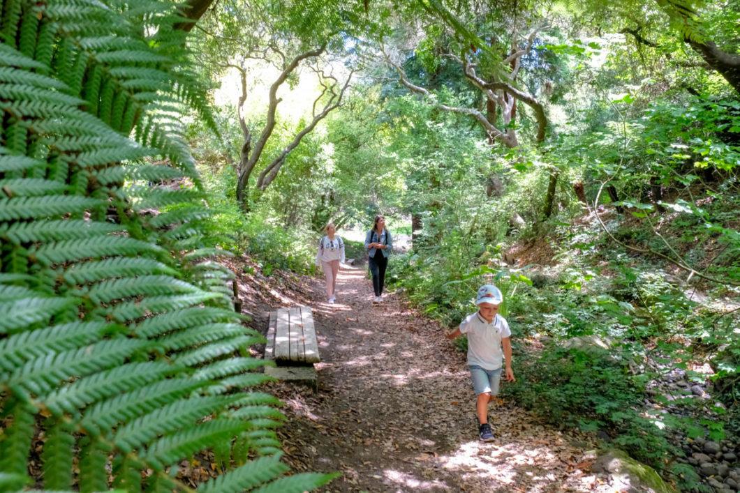 visite guidée San Francisco Golden Gate Park