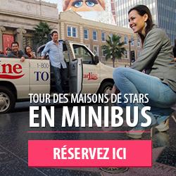Los Angeles minibus
