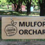 Fruita section