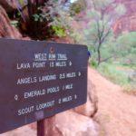 angel's landing trail
