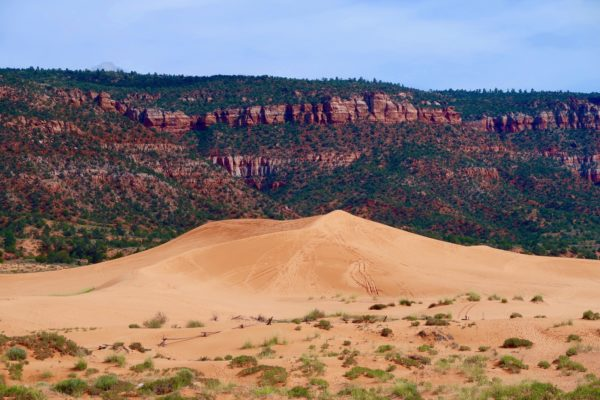contraste dunes et grès rouge