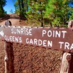 Queens garden trail