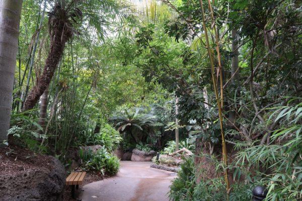 accessibilité zoo San Diego