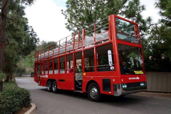 Kangaroo Bus