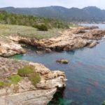 côte Point Lobos