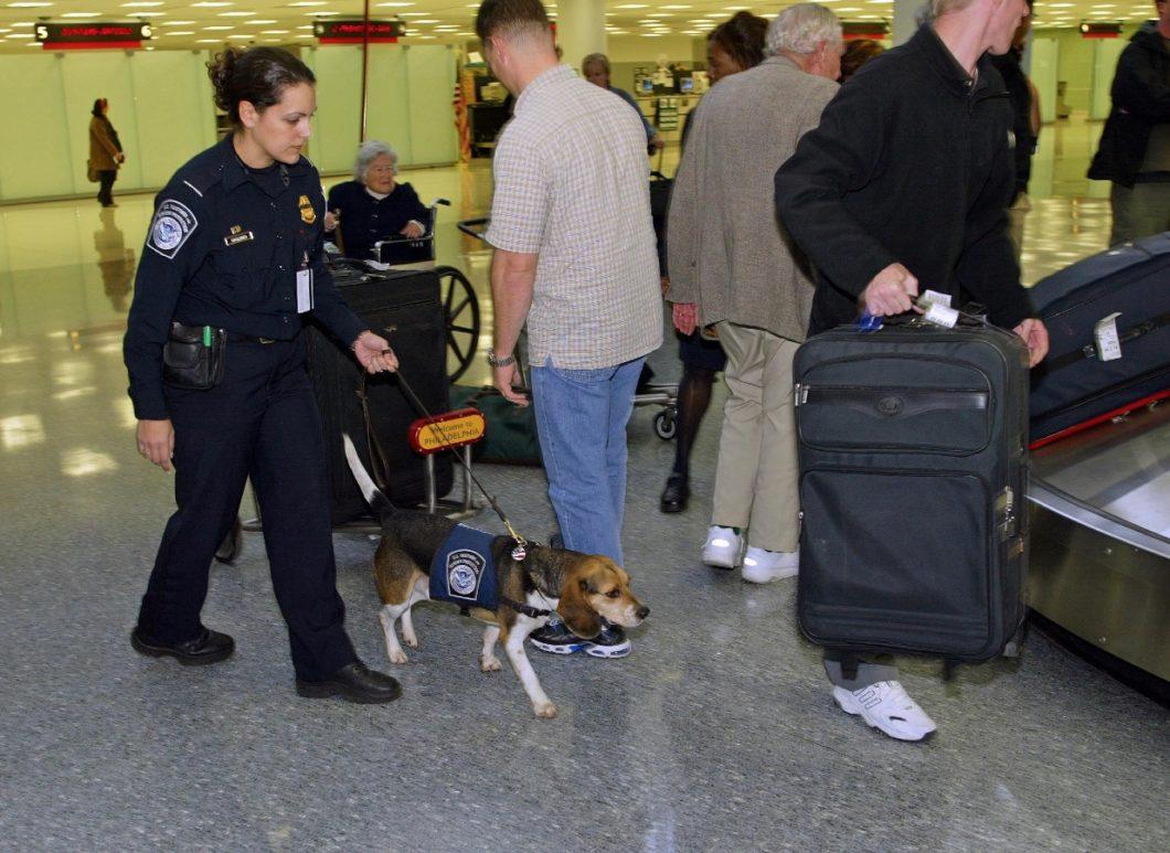 bagages arrivée à l'aéroport