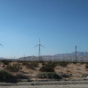 champs d'éoliennes