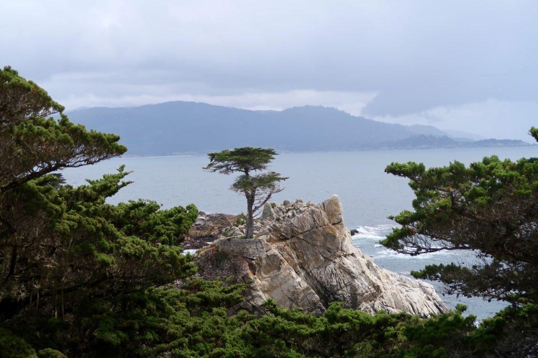 secteur de Monterey