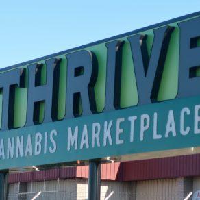 activité du Cannabis