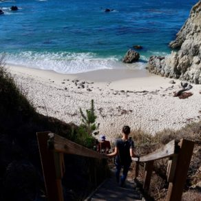 Gibson Beach Point Lobos