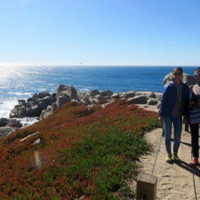 Road Trip familial - Monterey