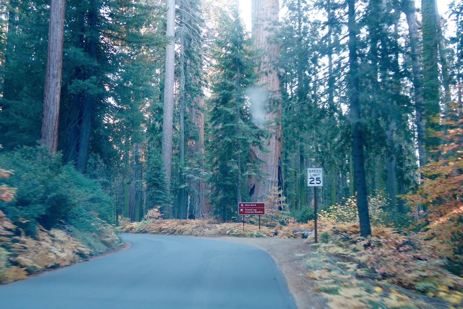 accès routier