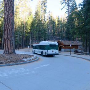Mariposa Grove Shuttle