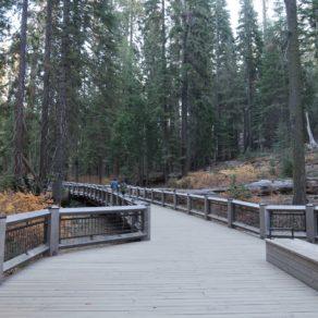 BigTrees Loop Trail
