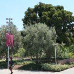 photo du Grand Park L.A